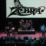 Live Review: Zebra at Arcada Theatre